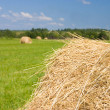 Haystacks harvest against the skies - Stock Photo