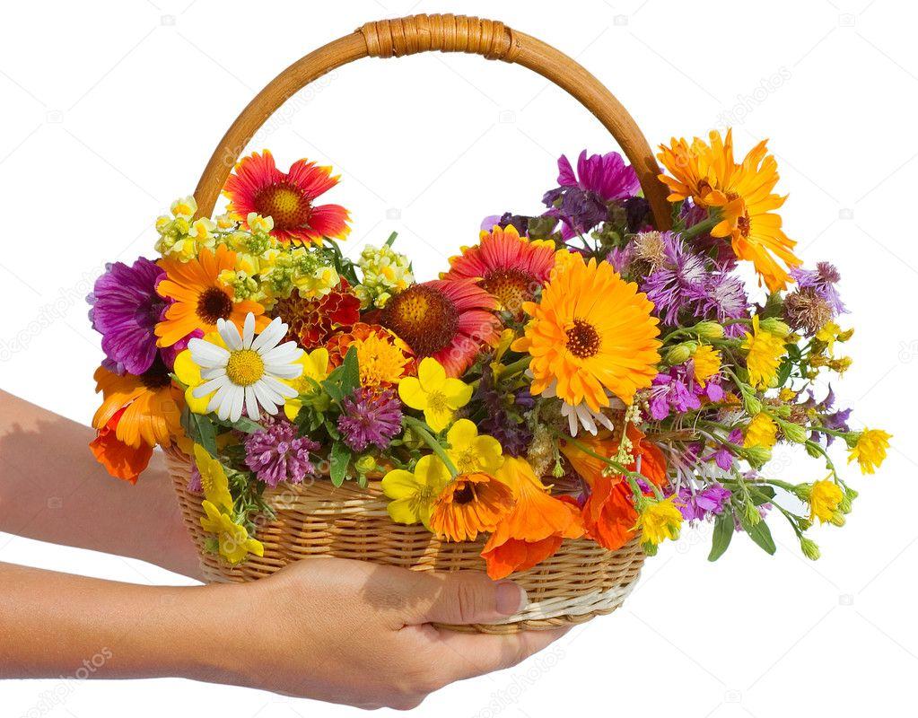 Корзина с садовыми цветами фото