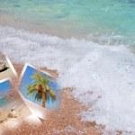 Tropic beach theme collage composed of few photos — Stock Photo