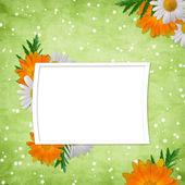 花と休日のためのカード — ストック写真