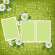 Card for the holiday with flowers — Stock Photo #2851445