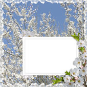 Card for holiday with flowers — Stok fotoğraf