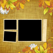 Autumn card for the holiday with leaves and flowers — Stock Photo