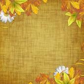 Podzimní karta pro dovolenou s listy a květy — Stock fotografie