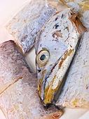 Fresh Conger fish — Stock Photo