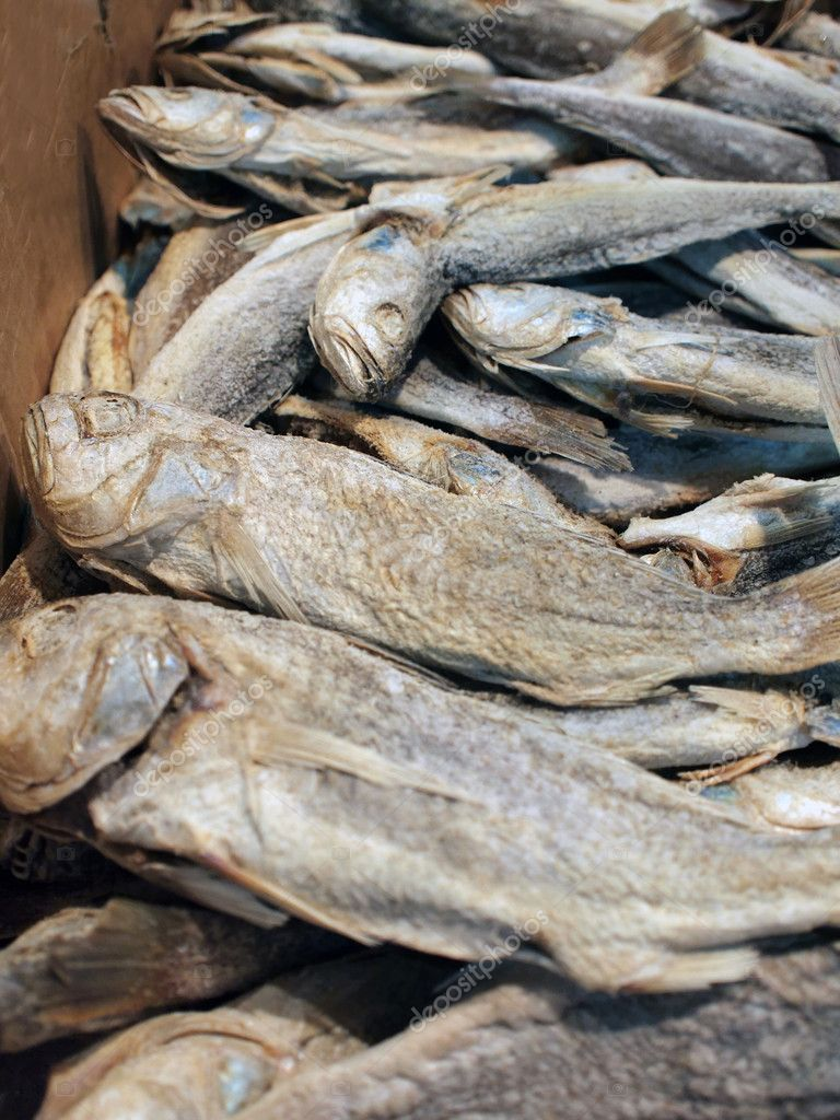 Sun dried and salted fish stock photo ivylingpy 3507702 for Dried salted fish