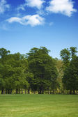 Hyde Park in London — Stock Photo