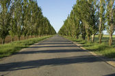 Empty road to perspective — Stock Photo