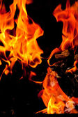 Fire flames raising — Stock Photo
