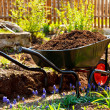 Wheelbarrow in a garden — Stock Photo #3085207