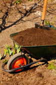 Wheelbarrow in a garden — Stock Photo