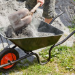 Stock Photo: Somebody filling wheelbarrow