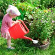 Little gardener — Stock Photo #3550815
