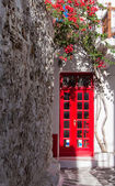 Red door surrounded by flowers — Stock Photo