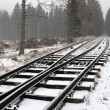 Snowy rails - Stock Photo