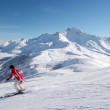 Skiing — Stock Photo #3004960