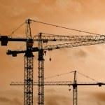 Cranes — Stock Photo #3681748