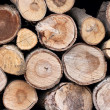 Logs — Stock Photo #3682024