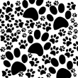 Black and white background with paws - Stock Photo