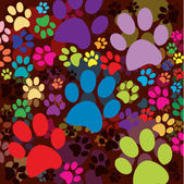 Dark background with colored paws — Stock Photo