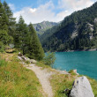 Trail by the alpine lake — Stock Photo