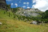 Alpine Village landscape in summer — Stock Photo