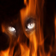 Eyes of a black cat look out of fire — Stockfoto