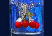 Cherries — Stock Photo