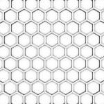 Bee honeycombs — Stock Photo