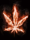Marijuana in Fire — Stock Photo