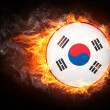 Korea Flag — Stock Photo
