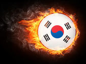 Korea Flag — Stock Photo