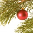 Stock Photo: Christmas ball on fir banch