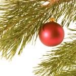 Christmas ball on fir banch — Stock Photo #2947467