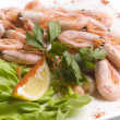 Boiled shrimps with salad leaves and slice of le — Zdjęcie stockowe