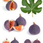 Fig fruits set — Stock Photo