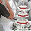Cutting the Cake — Stock Photo