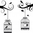 Stock Vector: Bircage and birds, vector