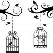 Bircage and birds, vector - Stock Vector