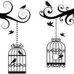 bircage a ptáků, vektorové — Stock vektor