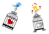Birds in love with birdcage — Stock Vector