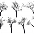 Tree silhouettes, vector — Stock Vector