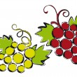 Grapes, vector - Vettoriali Stock