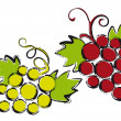 Grapes, vector — Stock Vector #3817268