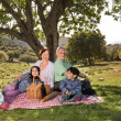 Stok fotoğraf: Grandparents grandchild picnic