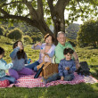 Grandparents grandchild picnic — Stok fotoğraf