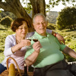 Royalty-Free Stock Photo: Senior couple having a picnic