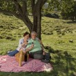 Senior couple having a picnic — Stock Photo