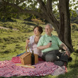 Senior couple having a picnic — Stock Photo #2913486