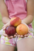 Three nectarines in child hands — Stock Photo